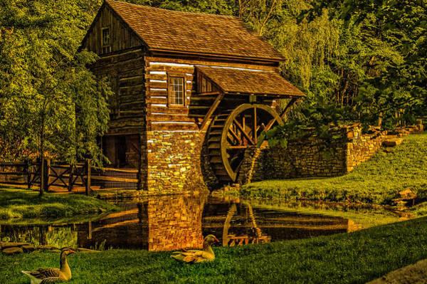 Photograph - Beautiful Cuttalossa Farm by Louis Dallara
