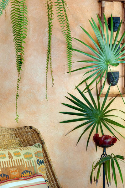 Photograph - Beautiful Decor At Casa Candiles. Ixtapa Mexico by Rob Huntley