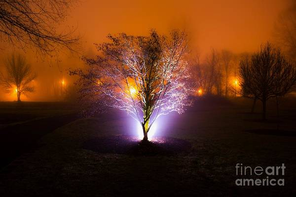 Photograph - Beautiful Foggy Night 2 by Michael Cross