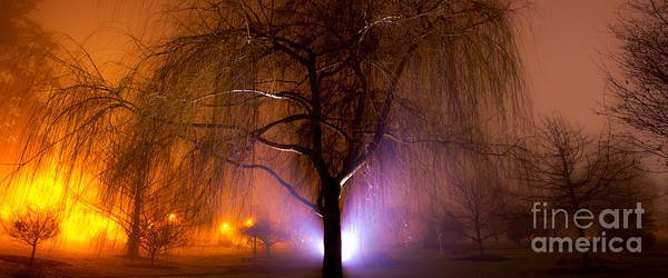 Photograph - Beautiful Foggy Night 3 by Michael Cross