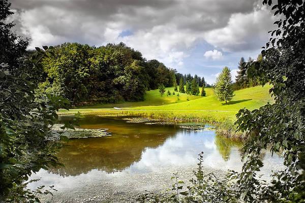 Photograph - Beautiful Garden Summer Landscape by Danuta Antas Wozniewska