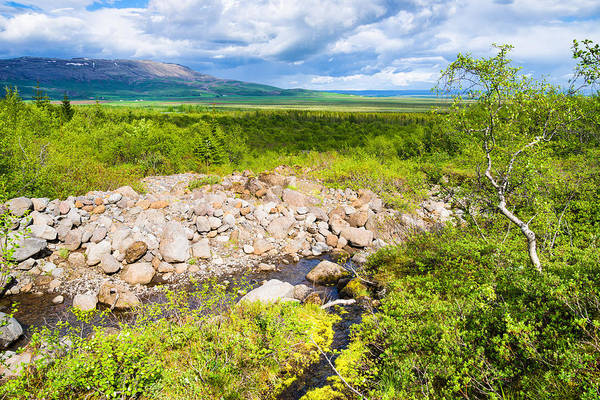 Photograph - Beautiful Green Landscape In South Iceland by Matthias Hauser