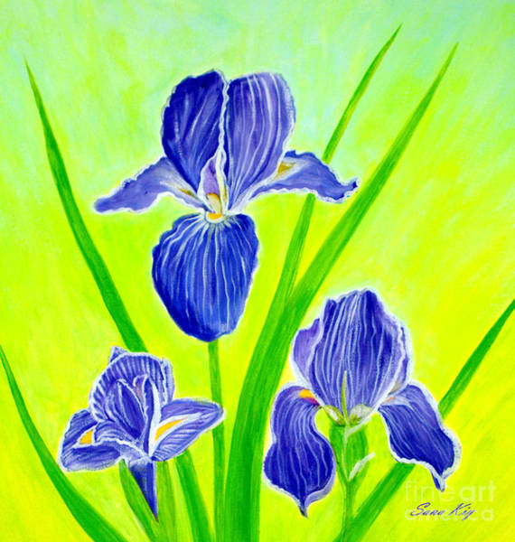 Painting - Beautiful Iris Flowers Card by Oksana Semenchenko