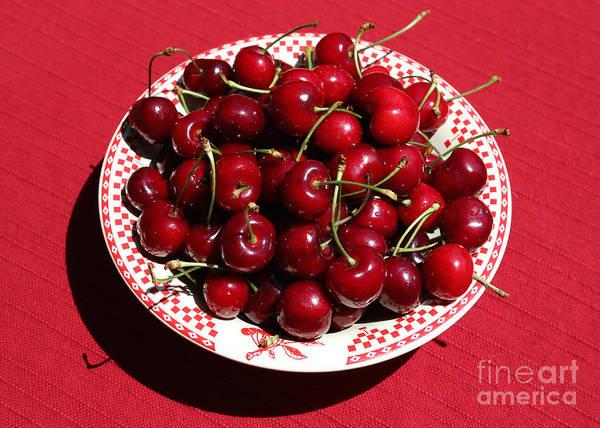 Wall Art - Photograph - Beautiful Prosser Cherries by Carol Groenen