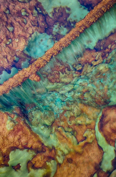Photograph - Beautiful Rebar Hot Springs by Scott Campbell