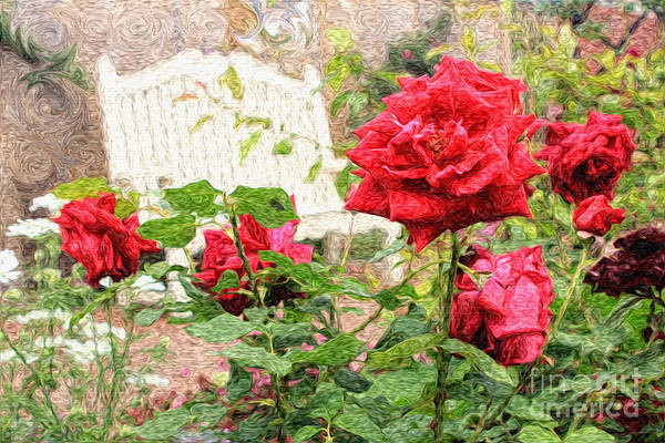 Photograph - Beautiful Red English Roses With White Bench by Beverly Claire Kaiya