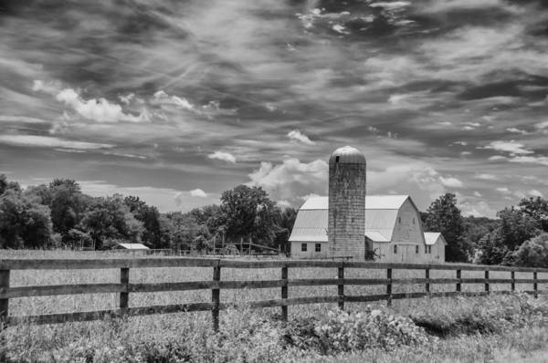 Photograph - Beautiful Virginia by Guy Whiteley