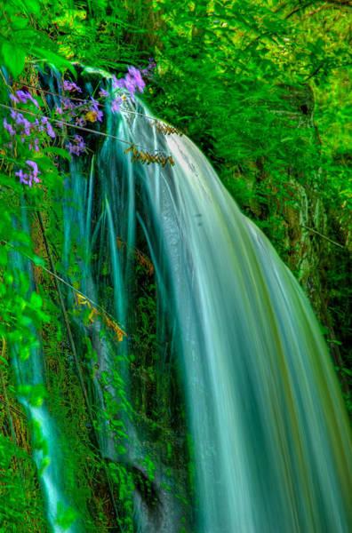Photograph - Beautiful Water Falls by Louis Dallara