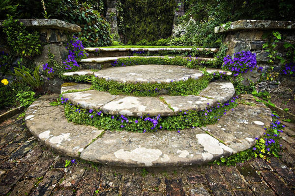 Photograph - Beautifully Planted Stone Garden Steps by Meirion Matthias