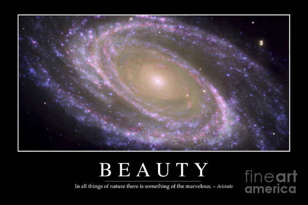 Photograph - Beauty Inspirational Quote by Stocktrek Images