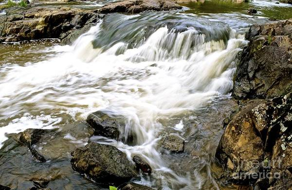 Nc State Wall Art - Photograph - Beauty On The Eno River by Lynn R Morris