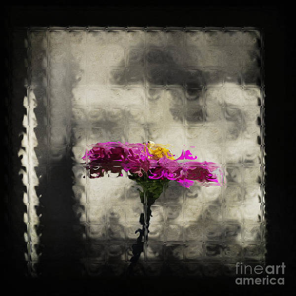 Photograph - Beauty Through The Glass by Pam  Holdsworth