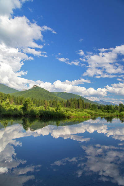 Beaver Pond Wall Art - Photograph - Beaver Pond Along The Flathead River by Chuck Haney