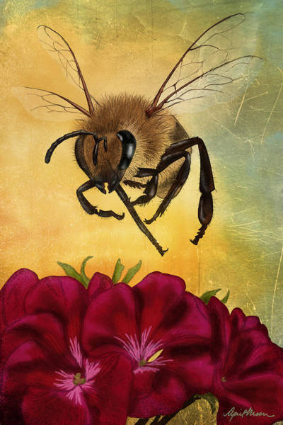 Red Geraniums Wall Art - Digital Art - Bee I by April Moen