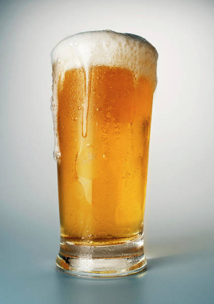 Beer Photograph - Beer In Glass by Atu Images