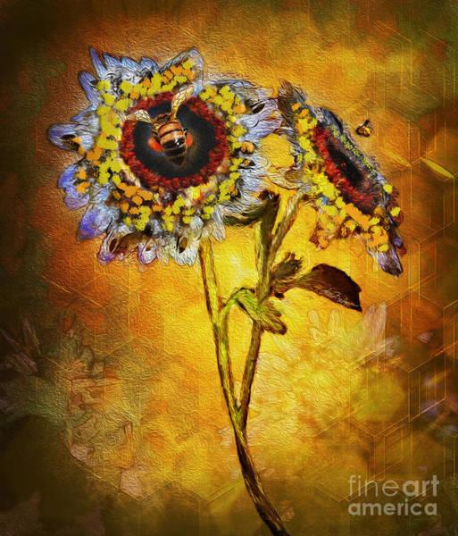 Digital Art - Bees To Honey by Lisa Redfern