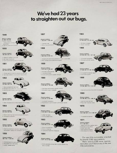 Wall Art - Photograph - Beetle Evolution by Benjamin Yeager