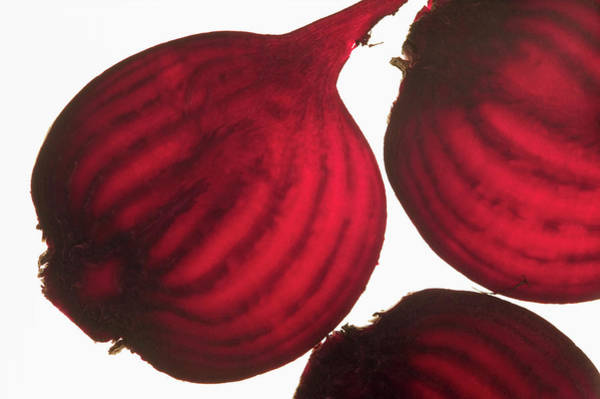Vegies Photograph - Beetroot, Backlit by Foodcollection