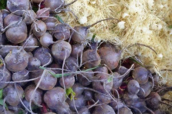 Scallion Photograph - Beets And Mini Onions At The Market by Michelle Calkins