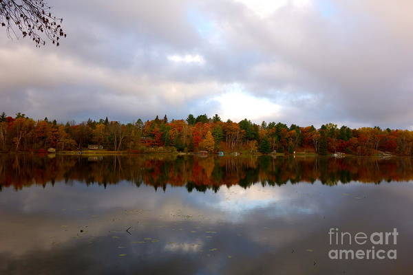 Photograph - Before The Winter Snow by Jacqueline Athmann