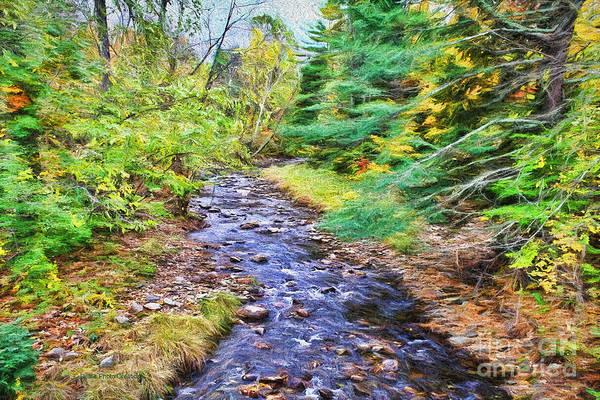 Photograph - Beginning Autumn Changes by Deborah Benoit