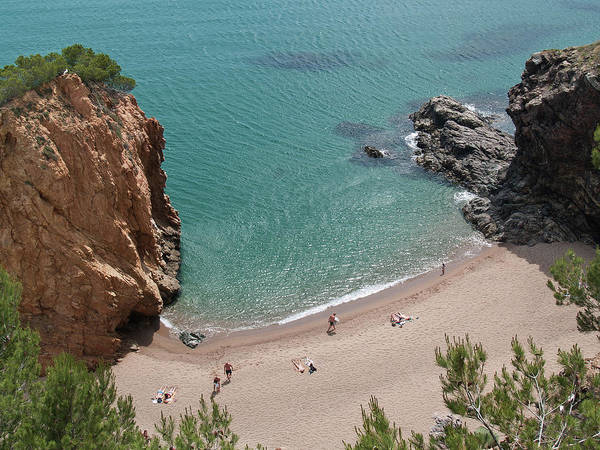 Waters Edge Wall Art - Photograph - Begur - Cala Illa Roja by Levilo