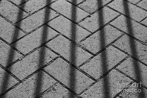 Crisscross Wall Art - Photograph - Behind Bars by Luke Moore