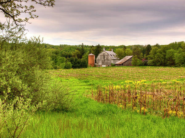 Photograph - Behind The Rose Barn by Thomas Young