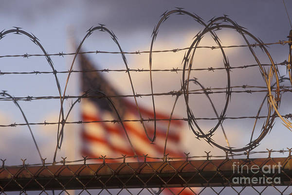 Photograph - Behind The Wire by Jim West