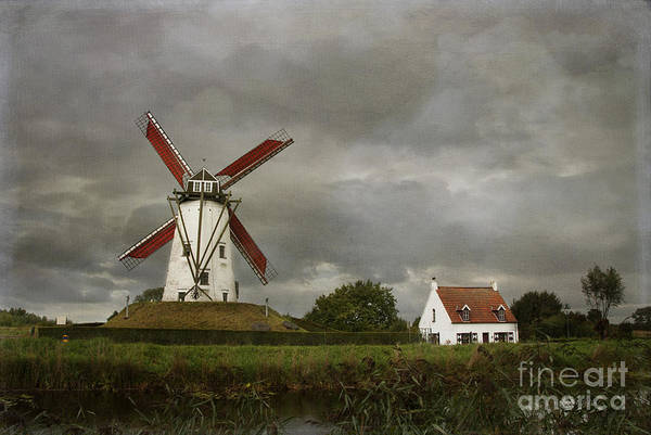Wall Art - Photograph - Belgium Windmill by Juli Scalzi
