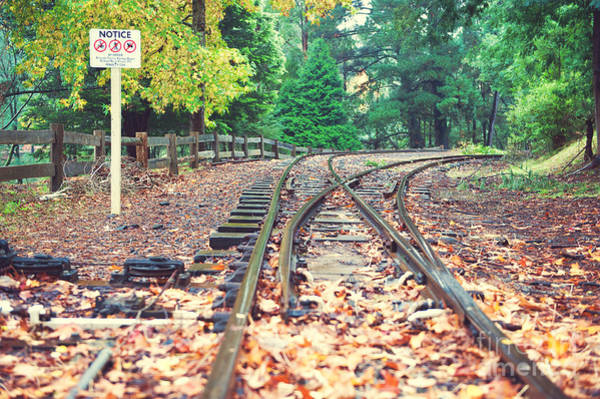 Photograph - Belgrave Puffing Billy Railway Track by Yew Kwang