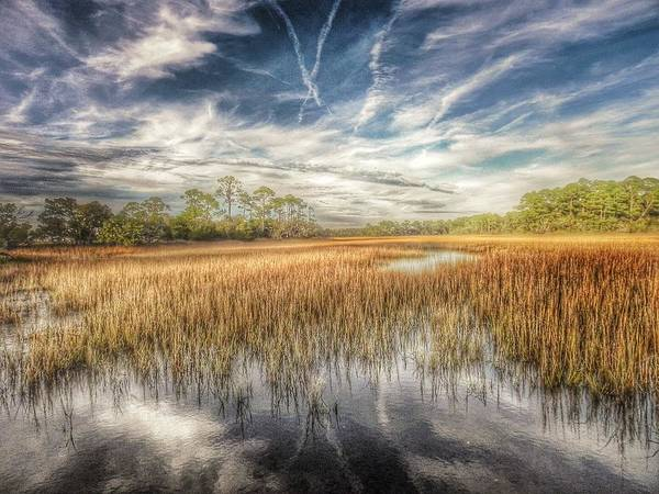 Marshland Photograph - Believe  by Patricia Greer