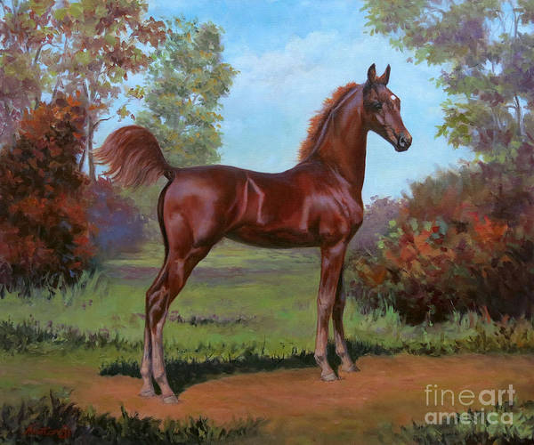 Wall Art - Painting - Bella by Jeanne Newton Schoborg