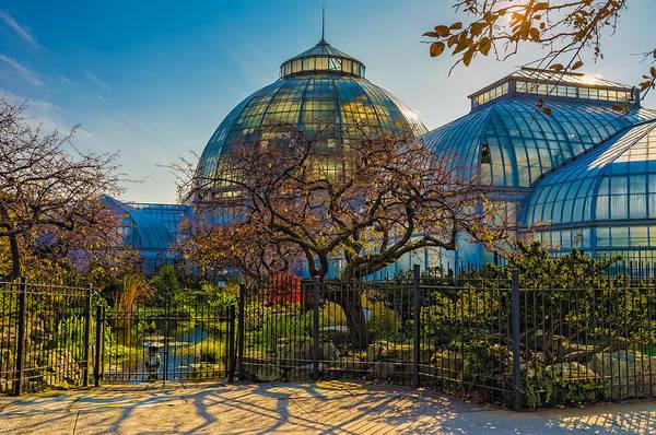 Photograph - Belle Isle Arboretum by Thomas Hall