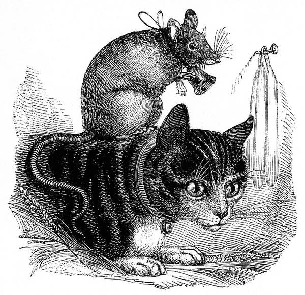 Tabby Drawing - Belling The Cat  A Mouse Wearing A Bell by Mary Evans Picture Library