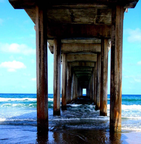 Scripps Pier Photograph - Below Scripps Pier by Stephanie Moses