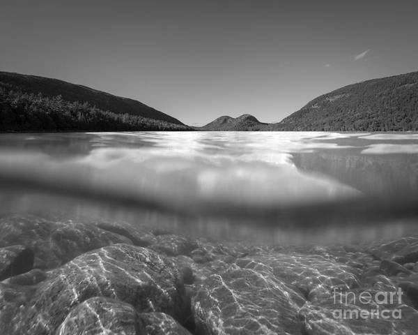 Michael Photograph - Below The Surface Of Jordan Pond Bw by Michael Ver Sprill