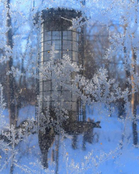 Photograph - Below Zero by R  Allen Swezey