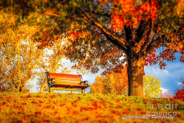 Photograph - Bench Break by Larry McMahon