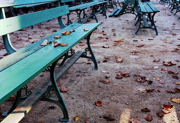 Photograph - Bench In The Park - Mike Hope by Michael Hope