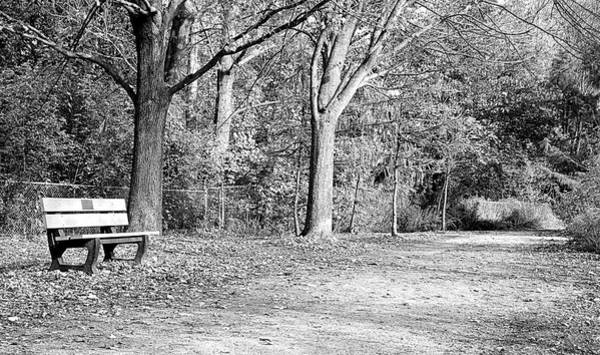 Wall Art - Photograph - Bench In The Park by Valentino Visentini