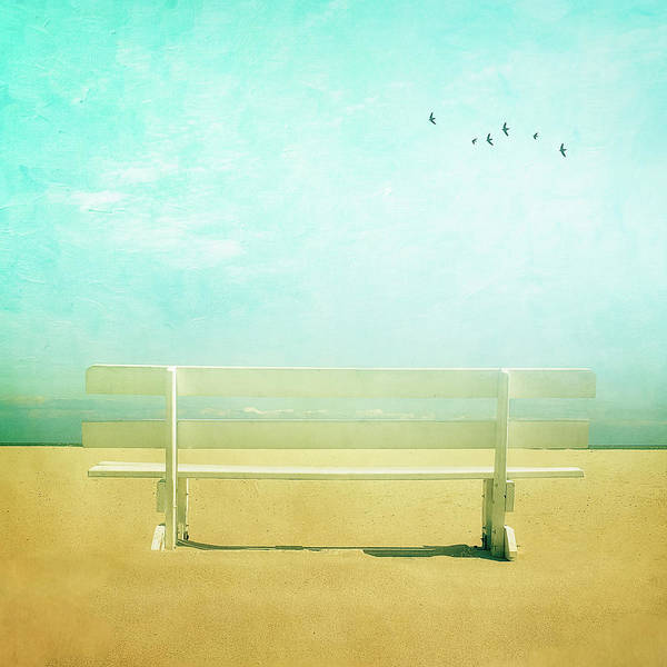 Delaware Photograph - Bench With Clouds And Birds by Diana Kehoe Photography