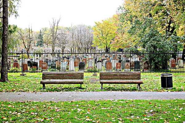 Wall Art - Photograph - Benches By The Cemetery by Valentino Visentini