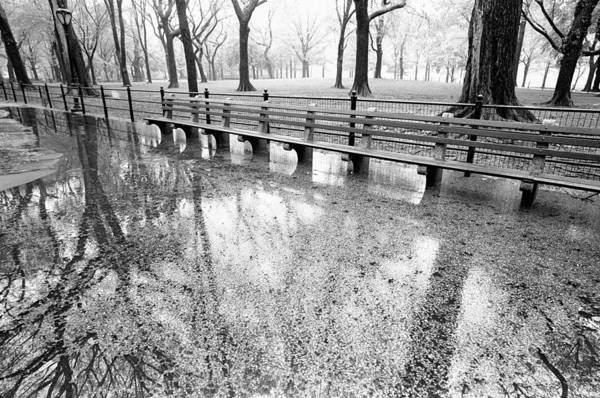 Photograph - Benches Reflection Poets Walk by Dave Beckerman