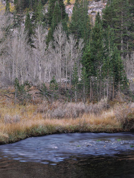Photograph - Bend At South Fork by Paul Breitkreuz