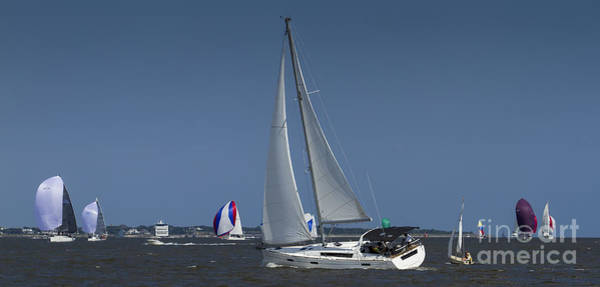 Photograph - Beneteau Oceanis 45 Sailing Charleston Harbor by Dustin K Ryan