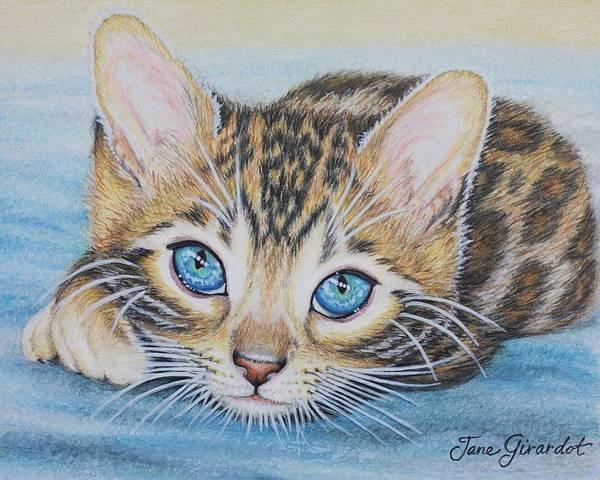 Wall Art - Drawing - Bengal Kitten by Jane Girardot
