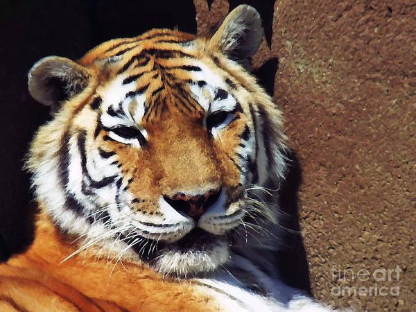 Digital Art - Bengal Tiger 2012 by Kathryn Strick