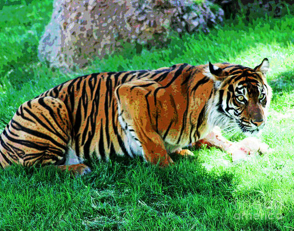 Photograph - Bengal Tiger by Larry Oskin