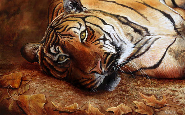 Big Cat Wall Art - Painting - Bengal Tiger by Steve Goad
